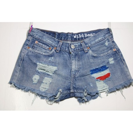 Short Levis 529 Destroyed